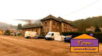 locaux professionels à Plancher-les-Mines (70)