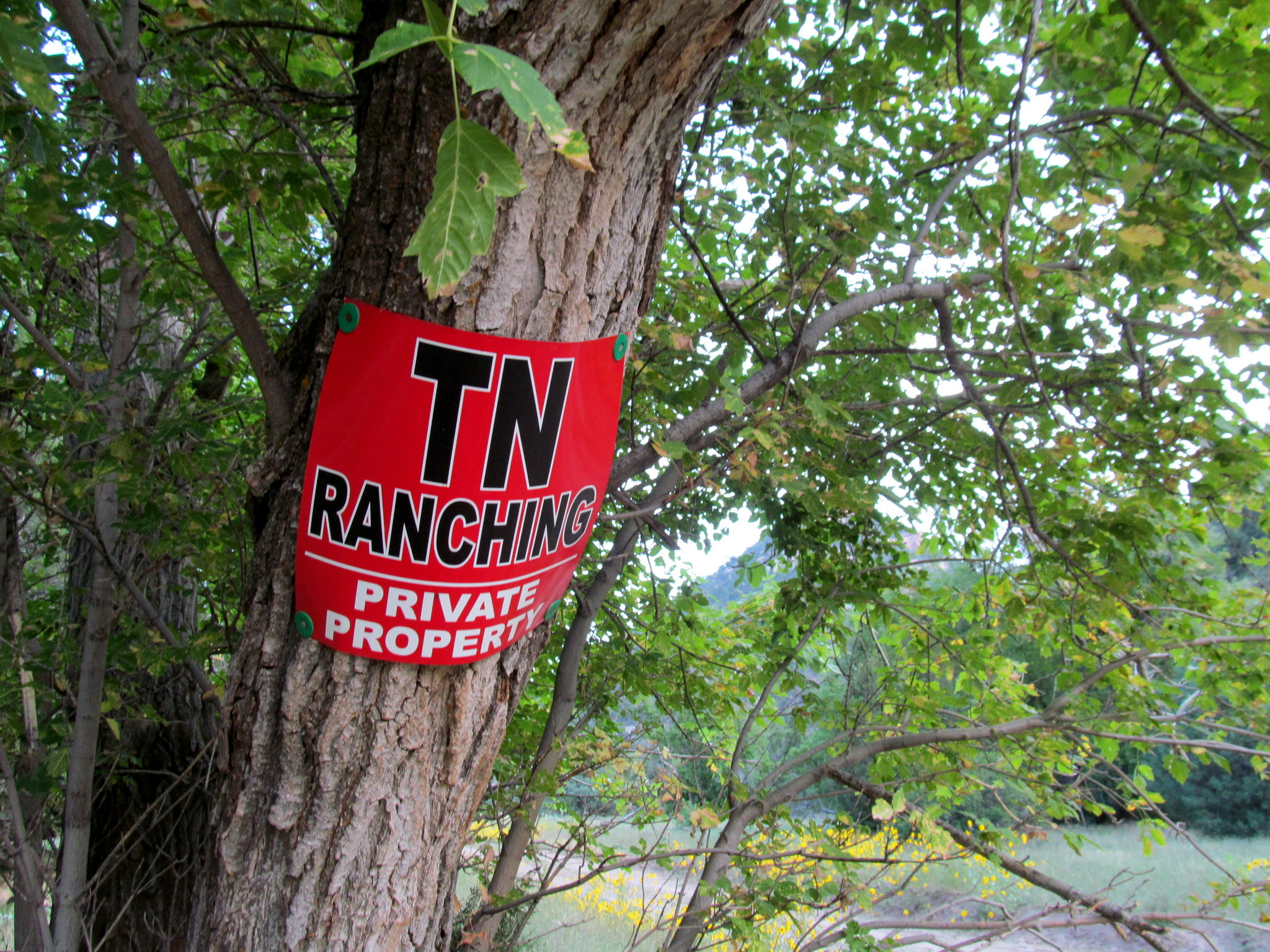 Photo: TN Ranching sign