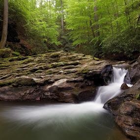 Tucquan Glen by Tim Devine - Nature Up Close Water