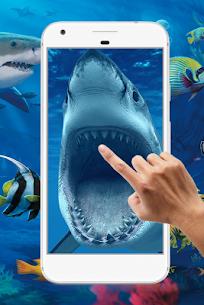 Shark Water Ripple Live Wallpaper 3