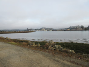 Photo: From the Sausalito Trail