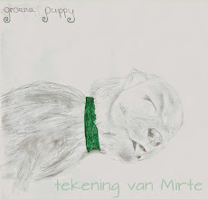 Photo: Deze tekening (van één van de foto's) kregen wij doorgestuurd. Hij is heel mooi Mirte, goed gedaan!