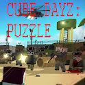 Cube DayZ Puzzle icon