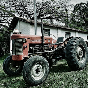She thinks my tractor´s sexy.. by Andre Salomão Brito Mattos - Transportation Other