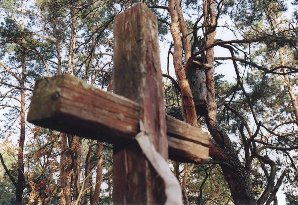 Вулик на кладовищі