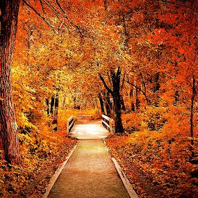 by Jean Verret - City,  Street & Park  City Parks ( city park  nature )