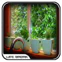 Kitchen Herb Garden Design icon