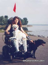 """Photo: Me, 1999 - Summer .... I made it down to Pine Beach with the dogs.  Just a few km from our home. We dubbed that chair the """"Forestmobile""""."""