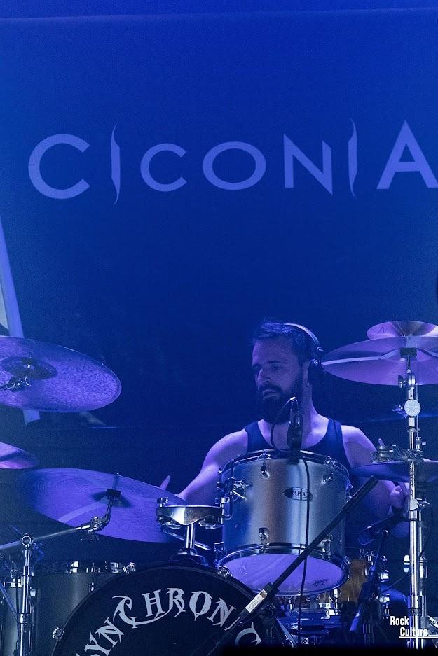 ciconia madrid