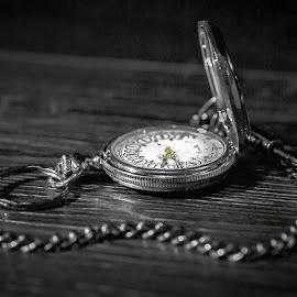 Father Time  by Scott Nightingale - Black & White Macro (  )