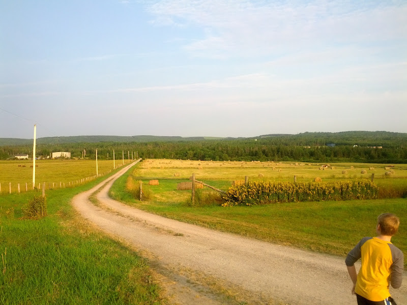 Photo: More farm B&B shots. We really enjoyed this place. The host/farmer was real salt of the earth.