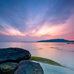 S w e e  t  D i s p o s i t i o n by Johari Nasib - Landscapes Waterscapes