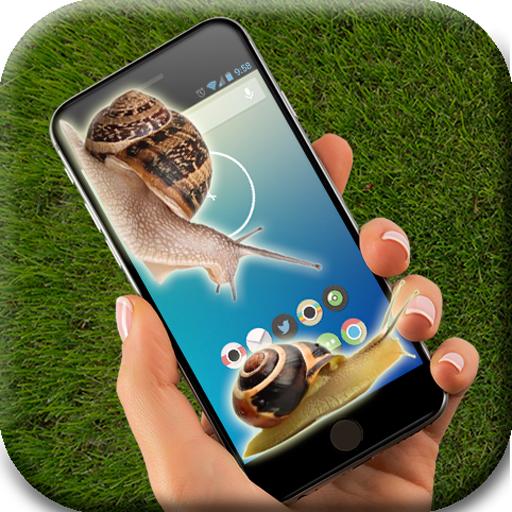 Snail on screen (app)