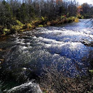 on Greenville Creek.jpg