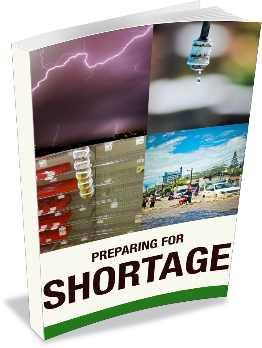 Click here for your free copy of the Preparing For Shortages eBook!