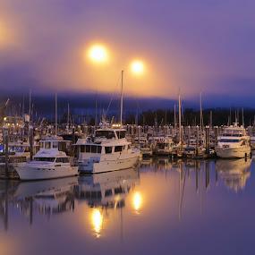 Quite night by Capt Jack - Landscapes Waterscapes ( calm, tranquil, valdez, harbor, color, fog, still, quiet )