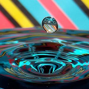 drops April 19 2012f1307.jpg