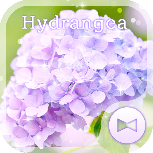 Flower Wallpaper Hydrangea Icon