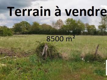 terrain à Saint-Léopardin-d'Augy (03)