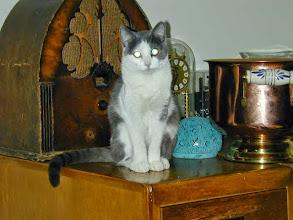 Photo: EMMA            2003