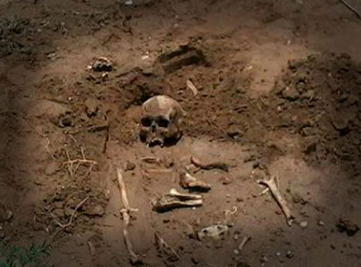 calavera y huesos humanos tirados en la tierra