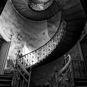 Spiral by Péter Mocsonoky - Buildings & Architecture Other Interior ( abstract, stair, old, stairway, dark, empty, spiral, architecture, double, abandoned, up )