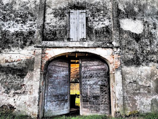Oltre la porta c'era vita di trifoglio