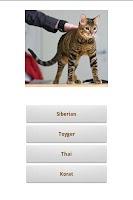 Screenshot of Cats!