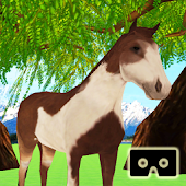 VR Horse Experience