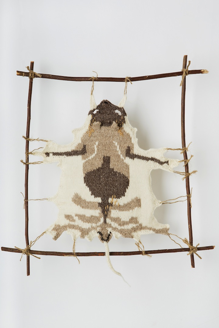 "Photo: BANDICOOT #2 2013 16"" X 10.75"" (40.6CM X 27CM) YARN, STRING, STICKS INTERPRETATION FROM SPECIMEN AT MELBOURNE MUSEUM: SEX-?   COLLECTED - HAMILTON, VICTORIA, P.HOMAR(?), JANUARY 14TH, 1968. (C) Ruth Marshall, 2013."