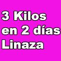 3 Kilos en 2 días - Linaza icon