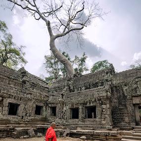 angkor by Mauro Rotisciani - City,  Street & Park  Historic Districts ( albero, sky, tempio, tree, monaci, cambodia )