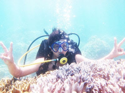 Bãi Dài Nha Trang, tour lặn biển ngắm san hô