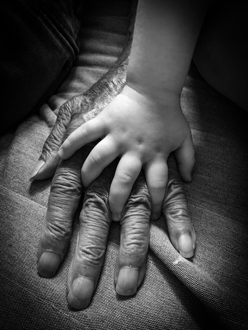 le mani  di giuseppe_mirabella