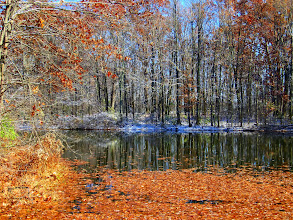 Photo: Firy orange leaves on a snow-dusted pond at Carriage Hill Metropark in Dayton, Ohio.