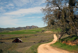 Photo: Near Pinnacles National Monument, west side, March 21, 2009