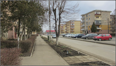 Photo: Str. Panseluţelor - 2018.03.10