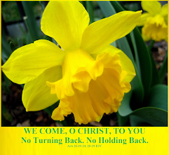 Photo: Theme: WE COME, O CHRIST, TO YOU ~ Message: No Turning Back. No Holding Back. ~ Scripture: Acts 26:19–24, 28–29 ESV. Image ~ Daffodil or Narcissus, March Flower  Biblical Inspiration 1...Message: No Turning Back. No Holding Back...   https://sites.google.com/site/biblicalinspiration1/biblical-inspiration-1-o-god-our-help-in-ages-past-series-changed-by-the-word-message-the-word-of-god-empowers-us-the-moody-church/biblical-inspiration-1-series-changed-by-the-word-message-the-word-of-god-converts-us-the-moody-church/biblical-inspiration-1-series-changed-by-the-word-message-the-word-of-god-teaches-us-the-moody-church/biblical-inspiration-1-series-changed-by-the-word-message-the-word-of-god-blesses-us-the-moody-church/biblical-inspiration-1-series-changed-by-the-word-message-the-word-of-god-transforms-us-the-moody-church/biblical-inspiration-1-series-changed-by-the-word-message-the-word-of-god-helps-us-pray-the-moody-church/biblical-inspiration-1-hallelujah-we-re-going-to-see-the-king-are-you-ready-ii-peter-3-1-18-esv-the-moody-church/biblical-inspiration-1-series-changed-by-the-word-message-the-word-of-god-has-visited-us-the-moody-church/biblical-inspiration-1-we-come-o-christ-to-you-message-no-turning-back-no-holding-back-the-moody-church