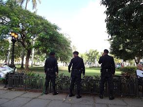 Photo: Policajti venčí svý vlčáky. Fakt tam někde jsou psi..