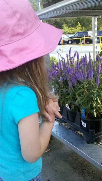 Photo: Out front they had a great selection of flowering plants. My daughter and I checked out the purple ones.