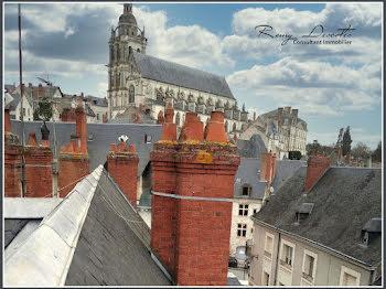 locaux professionels à Blois (41)