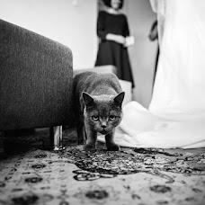 Wedding photographer Natalya Surinova (ginny). Photo of 29.09.2016