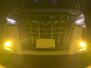アルファード AGH35W SC パッケージ 4WD 2018年車のカスタム事例画像 ALPHARD_7さんの2019年09月08日22:08の投稿