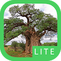 eTrees of Southern Africa Lite icon