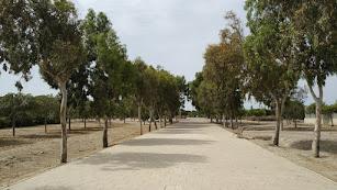 En lo que respecta a los lugares elegidos para la plantación, en el caso de Almería se ha escogido el Parque del Andarax.