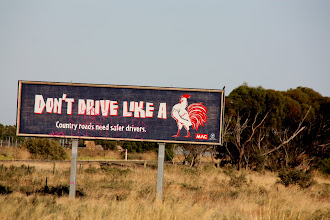 Photo: Year 2 Day 221 - And the Third One in the Series - Don't Drive Like a Cock (not a Turkey, or Chicken)
