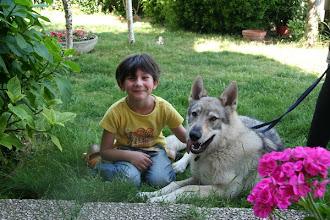 Photo: rachele antares sibillini wolf