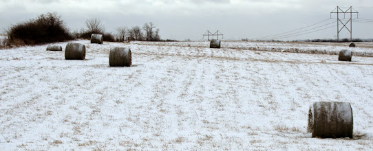 Photo: Kansas snowy field
