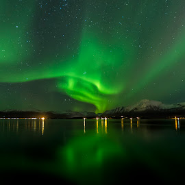 Aurora Borealis by Jens Andre Mehammer Birkeland - Landscapes Mountains & Hills ( reflection, mountains, sky, mountain, stars, northern lights, aurora borealis, star, sea,  )