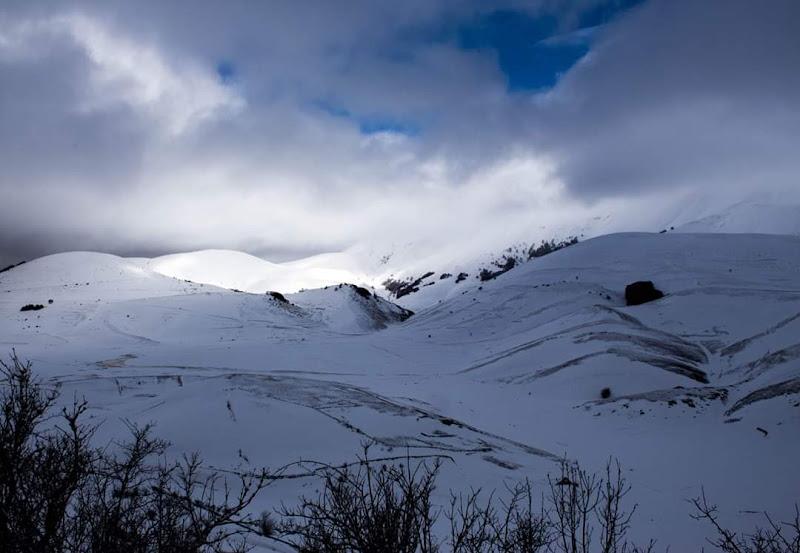 Sono distese lungo la pianura bianche file di campi di daniela_maranesi